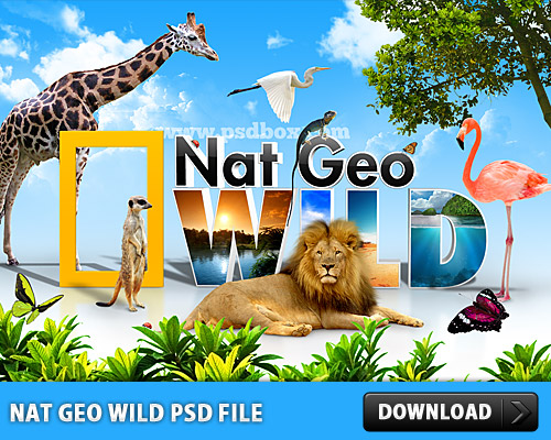 Download Nat Geo Wild PSD File