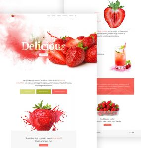 Single Product Website Template PSD