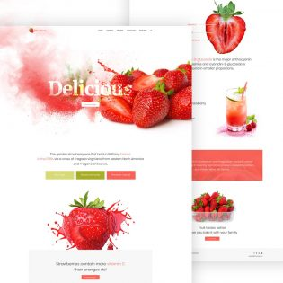 Single Product Website Template Free PSD