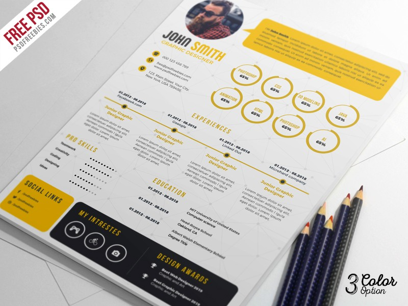 Download Free swiss resume/cv PSD - Download PSD