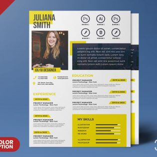 A4 Size Resume Design Template