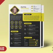 A4 Creative Resume CV PSD Template