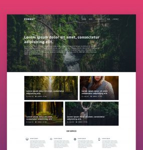 Download Agency Website Template Free PSD