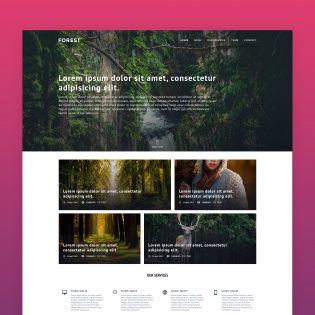 Agency Website Template Free PSD
