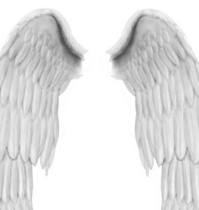 Angel Wings PSD file Wings, PSD, Angel,