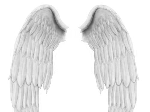 Angel Wings PSD file Wings, PSD, Angel,