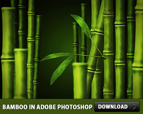 Free Bamboo PSD made in Adobe Photoshop Trees Psd Templates PSD Sources psd resources PSD images psd free download psd free PSD file psd download PSD Objects Nature Layered PSDs Graphics Free PSD download psd download free psd Bamboo Art