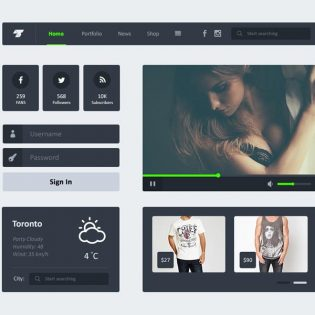 Black Widget Flat UI Kit Freebie PSD
