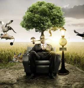 Brainstorming Photo Manipulation Free PSD Tree, Resources, PSD Sources, psd resources, PSD images, psd free download, psd free, PSD file, psd download, PSD, Photoshop, Photomanipulation, Photo Manipulation, Nature, Layered PSDs, Layered PSD, Graphics, Freebies, Free Resources, Free PSD, free download, Free, download psd, download free psd, Download, composite photography, composite, Brainstorming, brainstorm, Birds, Adobe Photoshop,