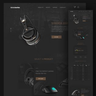 Computer Accessories Website Template Free PSD