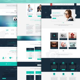 Corporate Services Single Page PSD Template