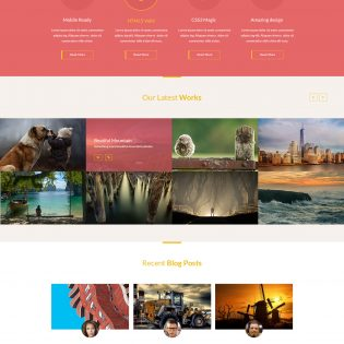 Creative Website Design Template PSD
