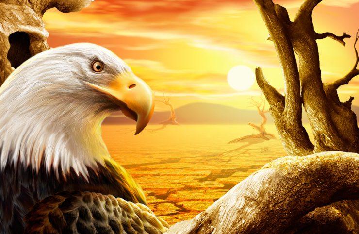 Desert-Eagle-Wallpaper-Photo-Manipulation-PSD