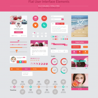 Flat Pink Web UI Elements Kit PSD