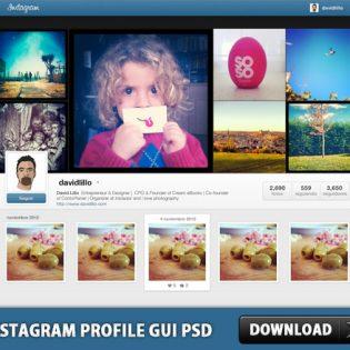 Instagram Profile GUI PSD