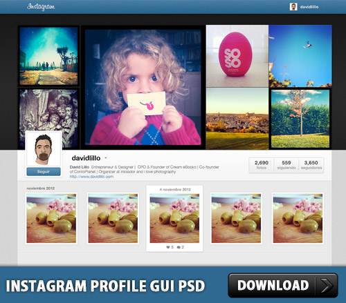 Instagram Profile GUI PSD Download Download PSD - Instagram ad template