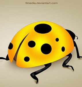 Lady Bug PSD Psd Templates, PSD Sources, psd resources, PSD images, psd free download, psd free, PSD file, psd download, PSD, Nature, Layered PSDs, Lady Bug, Insects, Icons, Free PSD, Free Icons, Free Icon, download psd, download free psd, Bug,