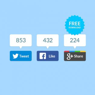 Modern Flat Social Networking Share Buttons Set