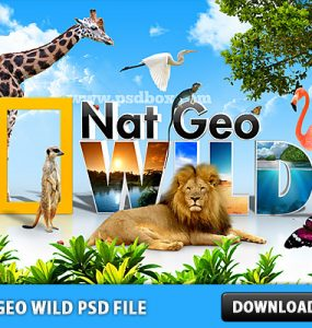 Nat Geo Wild Free PSD File Wild, Trees, Tree, Psd Templates, PSD Sources, psd resources, PSD images, psd free download, psd free, PSD file, psd download, PSD, Photo Manipulation, Nature, Natgeo, Nat Geo, Lion, Layered PSDs, Jungle, Free PSD, Forest, download psd, download free psd, Birds, Animals,