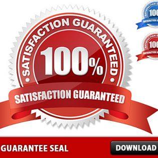 Free PSD Guarantee Seal File