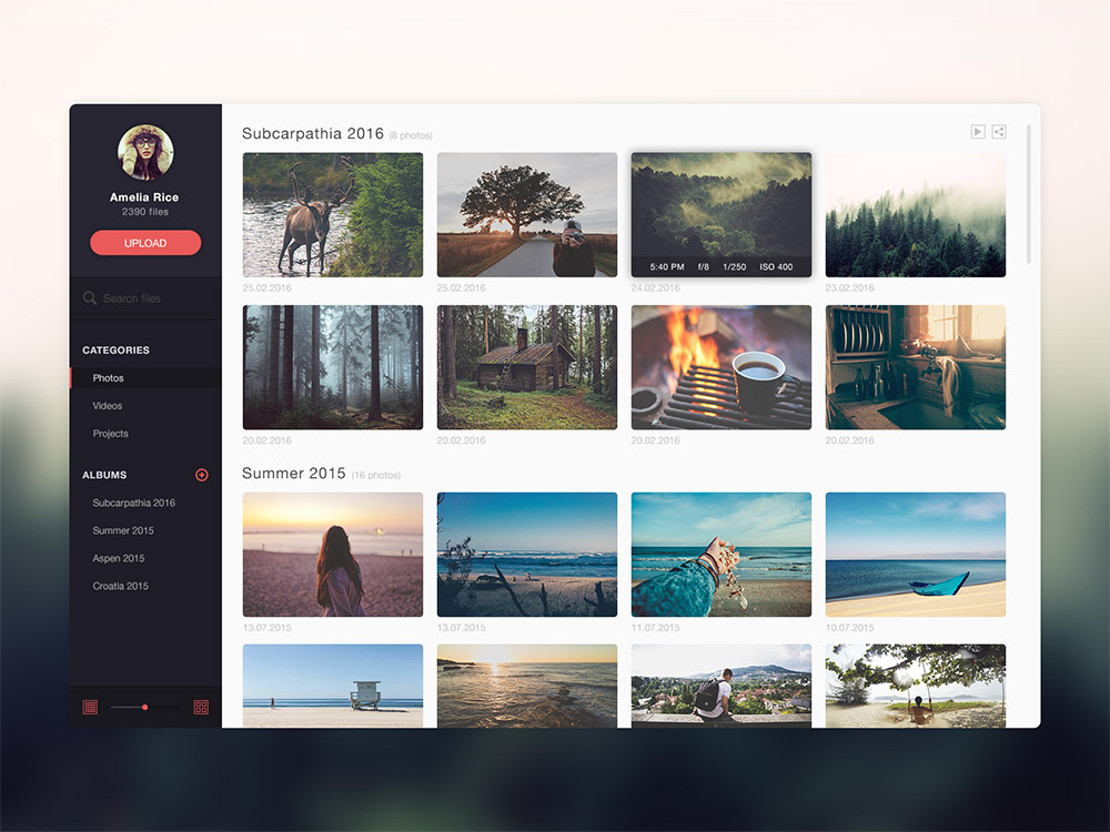 Download Photo Gallery Website Application Template Free PSD ...