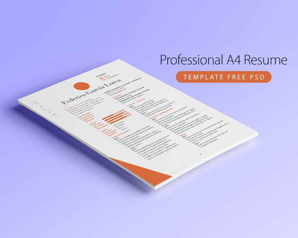 Professional A4 Resume Template Free PSD Download - Download PSD