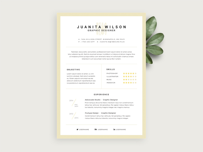 Simple Resume Template Free Psd Download  Download Psd