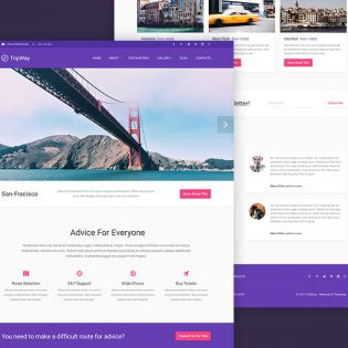 Travel Website Blog Free PSD Template
