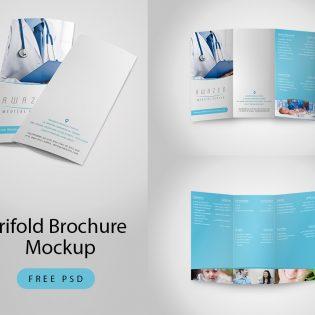 Trifold Brochure Mockup Free PSD
