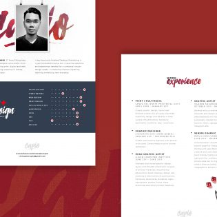 Web Designer Resume Template Free PSD Download Download PSD