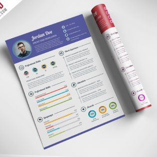 Professional Resume CV Template Free PSD