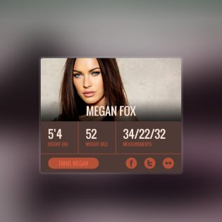 User Profile  Info Widget Free PSD