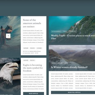 Blog and Magazine UI Kit Free PSD