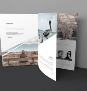 Open Brochure Mockup Template Free PSD