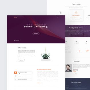 Agency Website Landing Page Template PSD