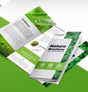 Nature Tri Fold Brochure Template Free PSD wind energy trifold brochure bundle Trifold Brochure trifold tri-fold bundle tri-fold brochure tri fold threefold eco brochure Templates Template technology brochure success solar energy smart simple brochure renewable energy pure energy public relations psd freebies psd freebie PSD Print template Print official office brochure offer brochure nature brochure Nature Multipurpose multi use modern design marketing green energy green corporate green catalogue Green Brochure PSD green brochure Green Grass Free PSD ecology brochure ecology eco friendly eco brochure design templates Custom Print Creative Brochure Design Creative corporate nice brochure corporate brochure cmyk clean brochure cheap tri fold business brochure Business brochure templates psd Brochure Template Brochure PSD brochure offer bundle brochure design brochure bundle Brochure both side design bi-fold brochure bi fold agency brochure bundle agency brochure abstract tri fold bundle Abstract bundle template A4 tri fold bundle A4 paper 3 fold