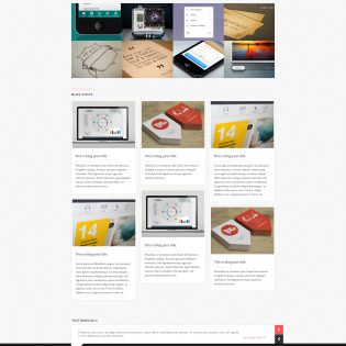 Realin Minimal WP Theme Homepage PSD